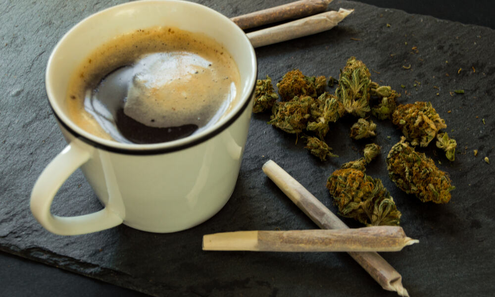 """West Hollywood Set To Get """"First of Its Kind"""" Cannabis Café"""