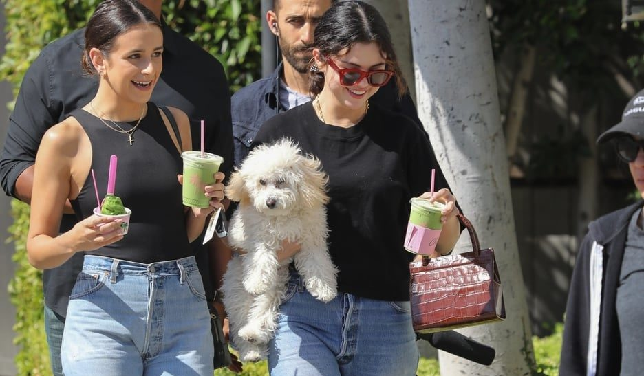 If We Can't Have Selena Gomez's Dog, at Least We Can Have Her Incredible Shoes